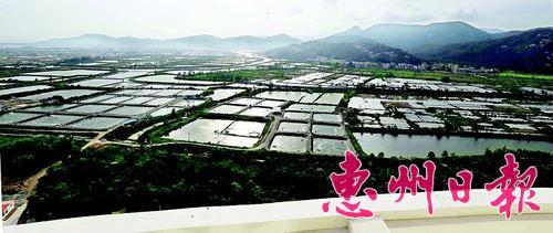 养殖业是港口一大产业。