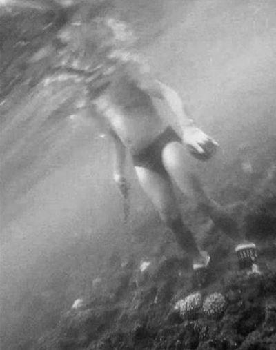 市民称大东海有人非法盗采珊瑚 回应:已介入