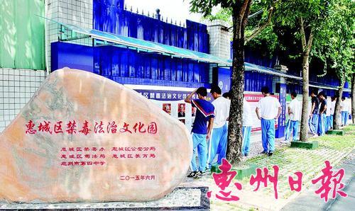 学生在禁毒法治文化园内观看禁毒宣传。