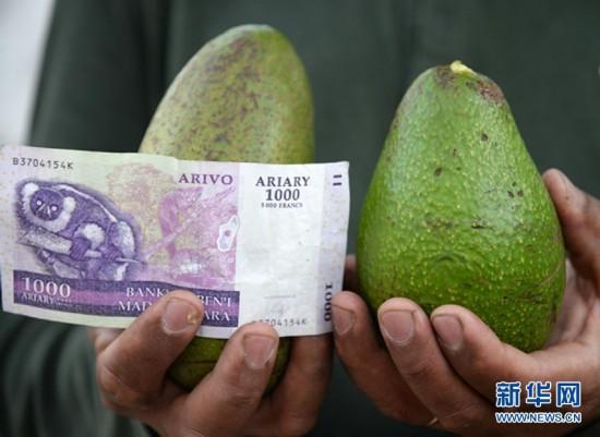 (国际)(7)1000块撒哈拉以南非洲国家货币能买啥?