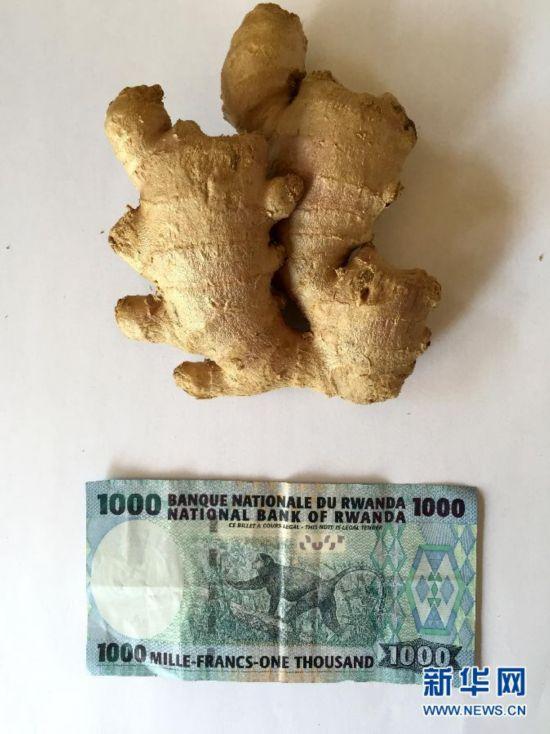 (国际)(2)1000块撒哈拉以南非洲国家货币能买啥?
