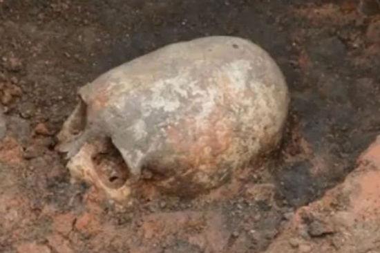 俄出土6000多年前女性頭骨 形狀奇特疑似外星人(組圖)