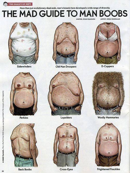 Brust östrogen mann Verändert Estradiol