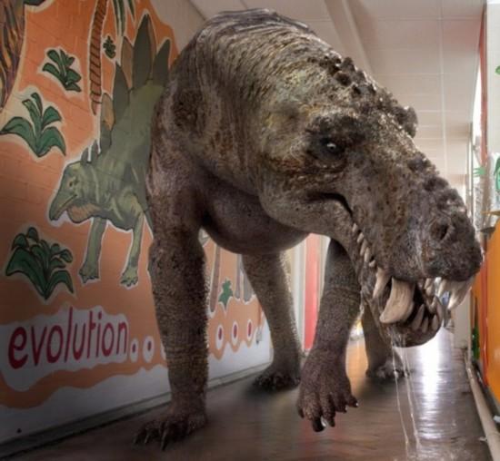 我要看史前动物的图片