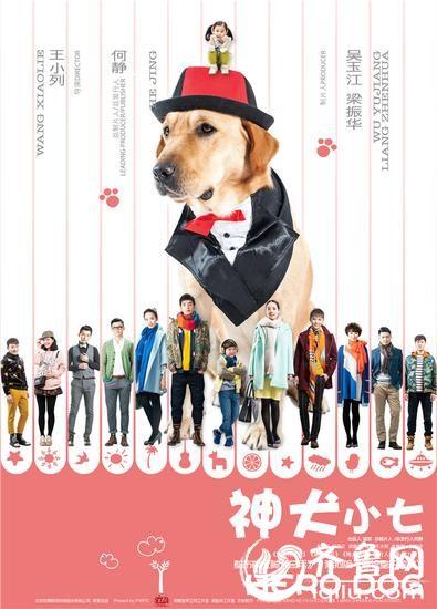 《神犬小七》电视剧全集剧情介绍1-45集大结局演员表
