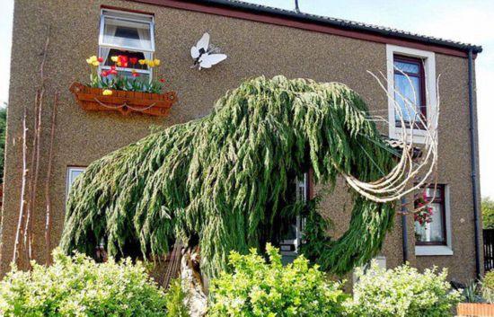 英雕刻师巧手变废木为猛犸象艺术品