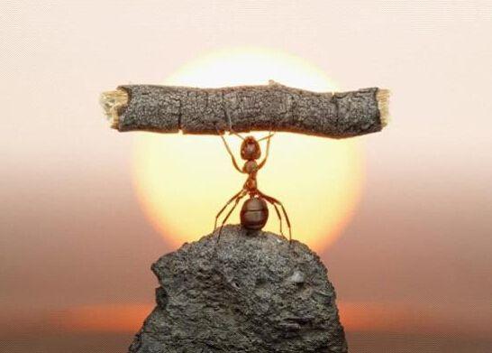 蚂蚁矿机s9内部结构