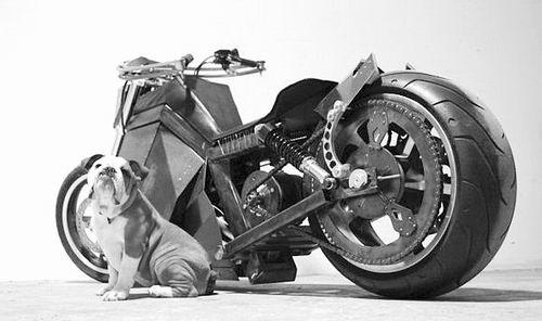 澳大利亚学生设计借风摩托 速度可达到80公里/小时
