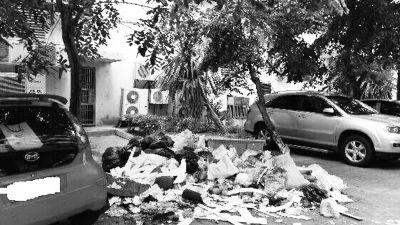 一小区百米路面垃圾成堆 恶臭难闻影响住户