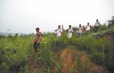 河南洛阳一村庄发现6座东汉帝陵 村民自建守墓队