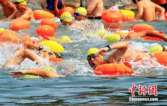 600余名游泳健儿横渡威海刘公岛