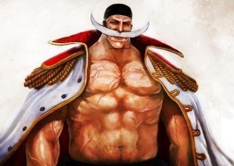海贼王漫画798话藤虎逼近路飞罗缺席 海贼王中十大魅力男人