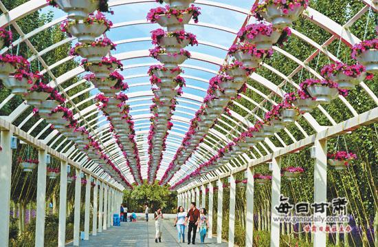 9月3日,金昌市紫金花城景区成为旅游新亮点,吸引了大量省内外游客