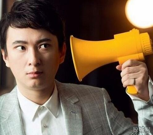 王思聪成立熊猫TV 注册资本2000万