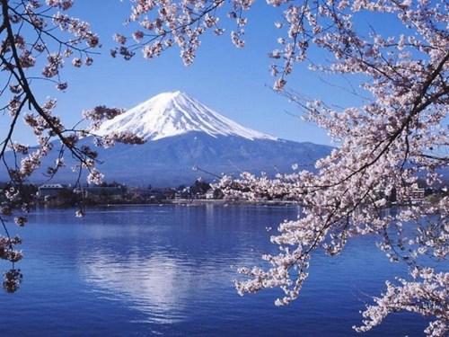 日媒:日本居中国人旅游目的地首位。