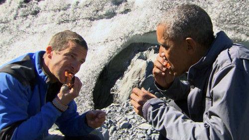 奥巴马和贝尔・格瑞斯在吃鲑鱼肉。