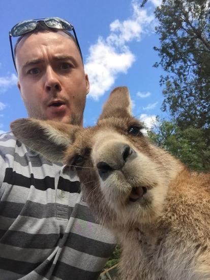 澳大利亚男子和袋鼠的自拍合照最近在网上走红了。图片来源:reddit网站。