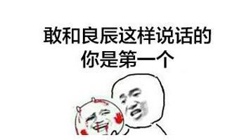 叶表情是谁曝个人资料良辰表情包字带图片图片通讨厌的卡四大网红赵日天