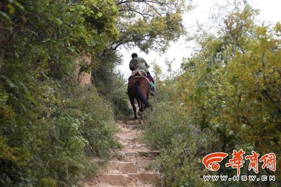 山间老骚逼_老姚骑马行走在山间小路上非常自如.