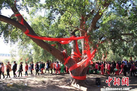 第二届沈阳法库圣迹山千年古枫节:赏千余棵古树