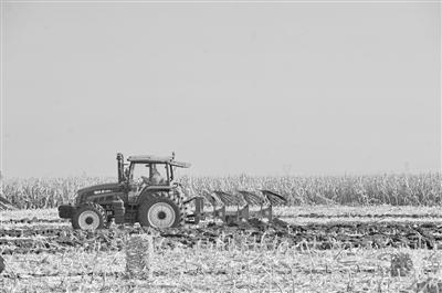 农业市场化要素改革蓄势待发 涉及土地制度