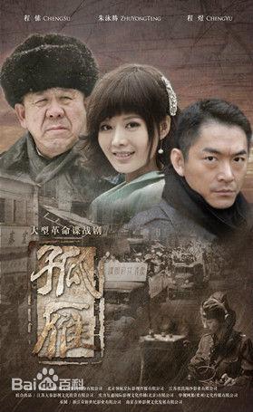 《孤雁》电视剧全集1-45集大结局分集剧情介绍演员表