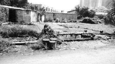 7个露天化粪池恶臭难闻 肥了菜地苦了居民