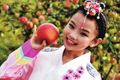 梦寻美丽孟岭 情醉富硒苹果