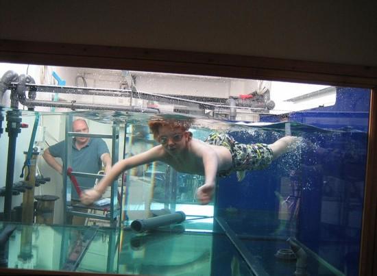 英男子为私建巨型鱼缸送妻子去度假