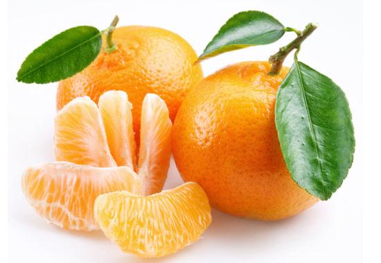 变废为宝:日本用烂橘子驱动拖拉机(图)