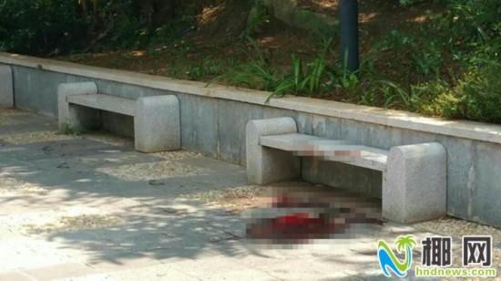 海口公园命案:同行女子称不认识3名行凶男子