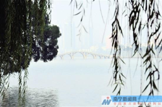 南宁创生态园林城市 市民对园林绿化满意率高达92%