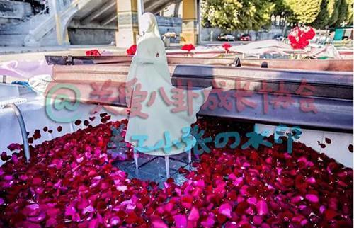 陈晓求婚现场曝光:设小龙女雕像鲜花铺地 扒假戏真做的情侣