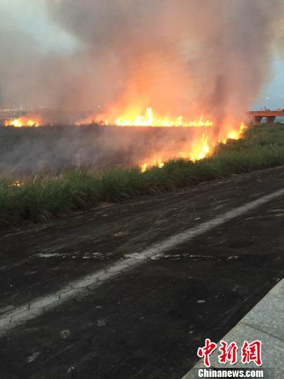 福州一湿地公园芦苇荡成火海40余消防官兵灭火