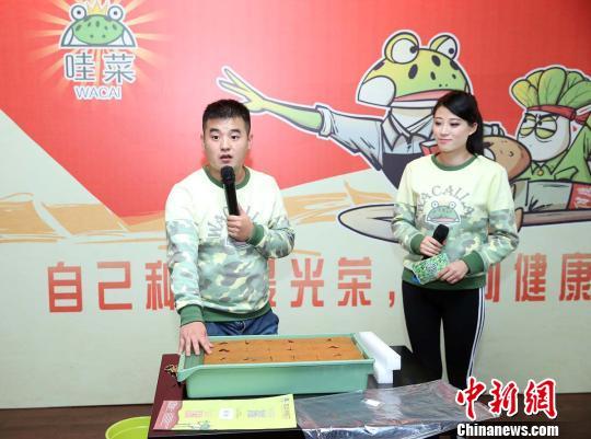 """手机操控即可在家""""种菜""""有机蔬菜种植盒亮相上海"""