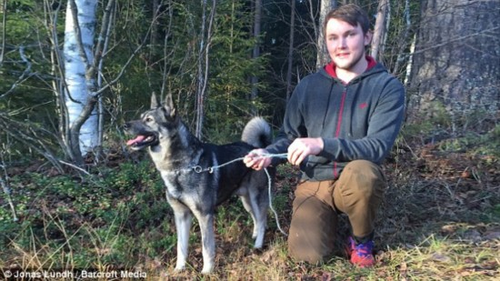 Jonas Lundh, 26, saved his father's beloved dog Rocky from drowning in Költräsk lake, Sweden on October 26  Read more: http://www.dailymail.co.uk/news/article-3303091/Moose-hunter-jumps-ice-cold-lake-Sweden-save-beloved-family-dog-drowning.html#ixzz3qVNkFci0  Follow us: @MailOnline on Twitter | DailyMail on Facebook