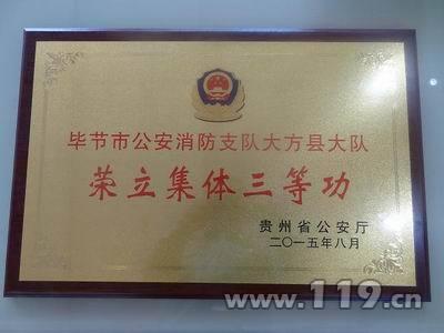 贵州大方消防荣获省公安厅