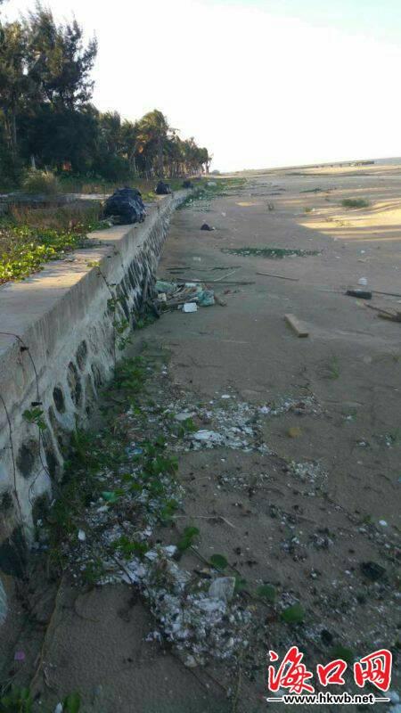 西海岸海岸线成垃圾带 秀英城管开出5万罚单