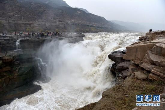 (生态)(1)黄河壶口瀑布水量激增 形成特大瀑布群