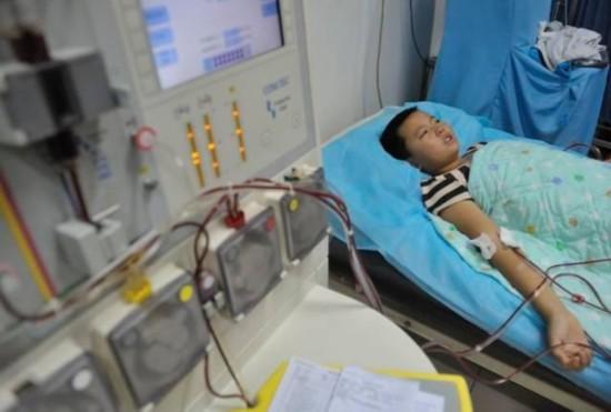 13岁黑龙江男孩昨捐干细胞救父 两个胳膊扎5次针