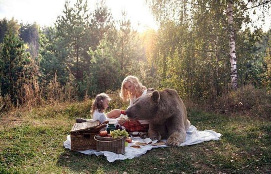 名模萌娃与熊野餐嬉戏惊呆众人 大棕熊如动画里一般呆