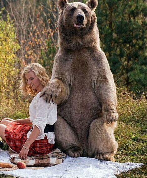 名模萌娃与熊野餐 上演现实版泰迪熊的野餐