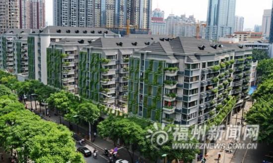 阳台飘窗和外墙绿化 立体绿化初露芳容