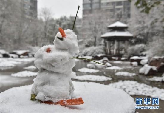 """(生态)(9)北京:""""小雪""""节气雪不小"""