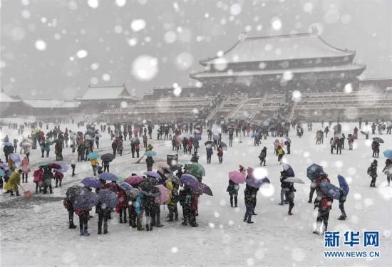 """(生态)(24)北京:""""小雪""""节气雪不小"""