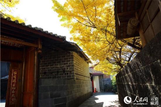 村内处处皆是景色 人民网 薛丹 摄