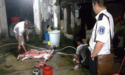 保亭打掉2生猪屠宰黑窝点 销毁278斤生猪肉