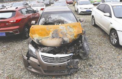 駕齡兩年內的司機最容易出車禍