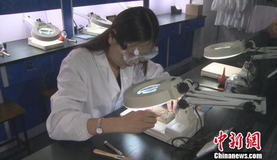 达尔文实验站南京建成 填补化石修复实验空白