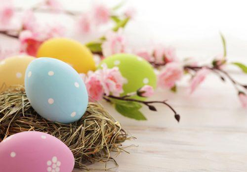 吃雞蛋5大誤區:天天吃雞蛋死得更快?